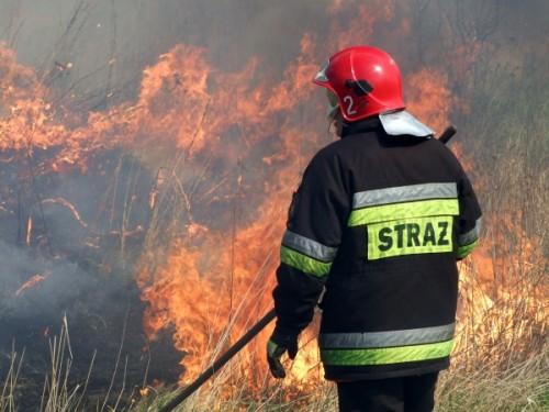 Strażacy apelują – Zakaz wypalania traw