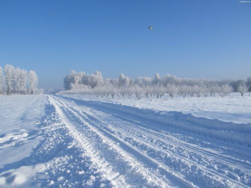 Zimowe utrzymanie dróg w Gminie Gryfów Śląski