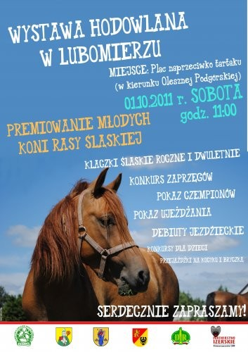 Wystawa koni hodowlanych
