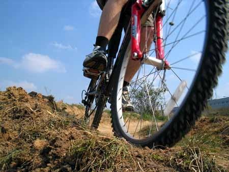 W rowerowym projekcie