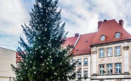 Życzenia dla mieszkańcom Gminy i Miasta Gryfów Śląski