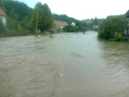 Podziękowanie za pomoc w powodzi